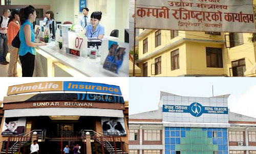 Types of Company in Nepal