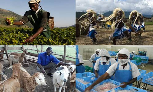Africa: Social and Economic Activities