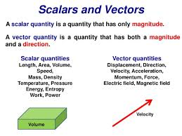 Scalars and vector  quantities