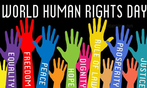 Human Rights and National and International Agencies
