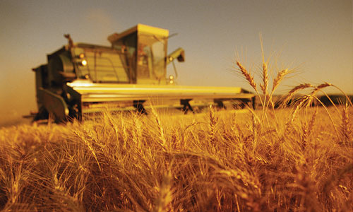 Relationship Between Agriculture and Industry