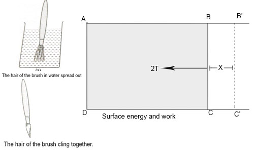 Some Examples Explaining Surface Tension and Surface Energy