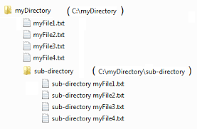 File and Directories