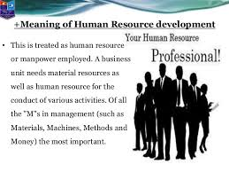 Human Resource Development and Management Development