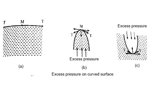 Excess Pressure on Curved Surface of a Liquid and inside Liquid Drop and Shape of Liquid Surface Meniscus
