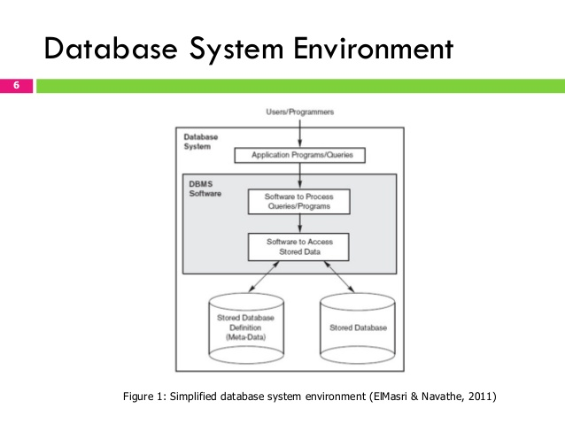 Database System Environment and Data Security