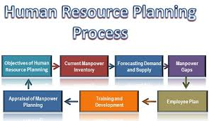 Human Resource Planning Process and Human Resource Planning in Nepalese Organization