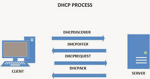 DHCP and web services