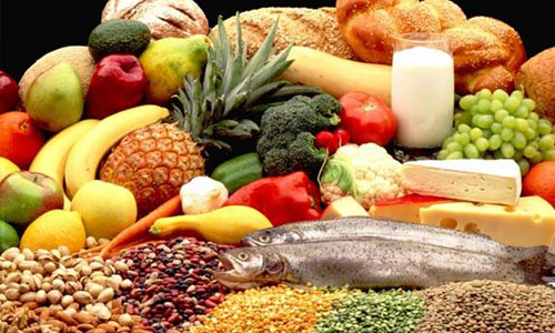 Nutrition and Balanced Diet