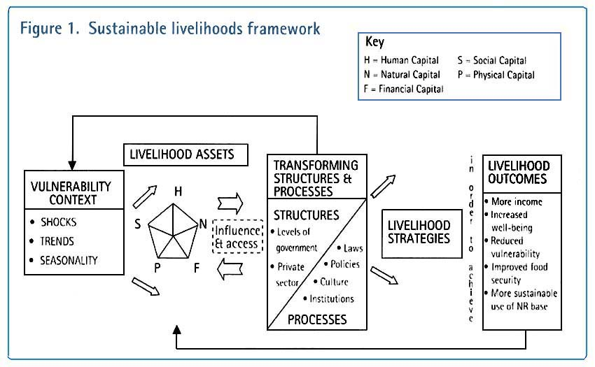 Components of Rural livelihood and livelihood Indicators