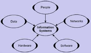 Introduction of Information System