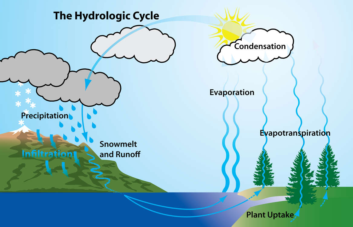 Introduction to Hydrological and Demand Survey