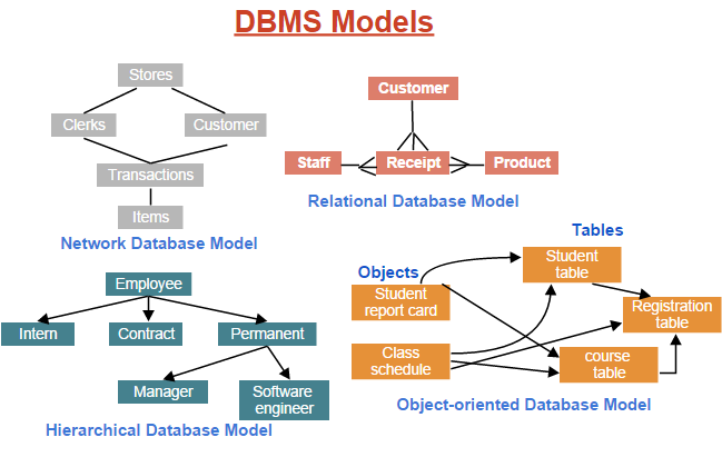 Database Models Kullabs Com