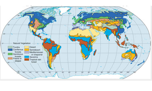 Vegetation and Wildlife in the World