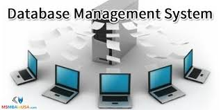 Introduction to database and database management system