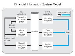 Financial Information System And Its Features