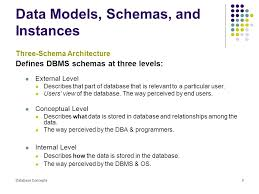 views of the data with instances and schemas