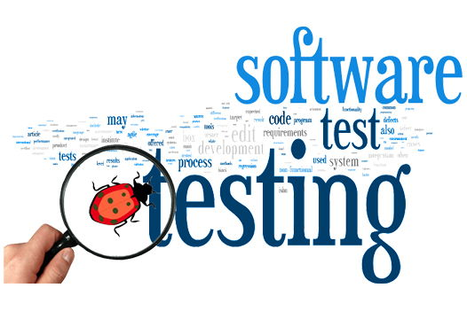 Software Bugs and Testing