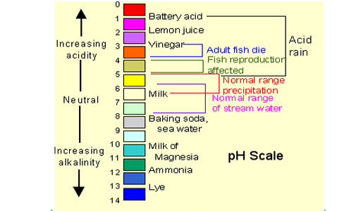 Modern Classroom Lesson Indicators : Ph scale kullabs