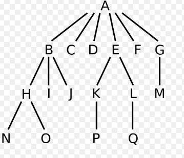 General Search Tree
