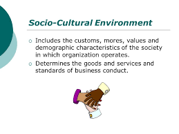 Components of Socio-cultural Environment, Family Structure and Social Organizations