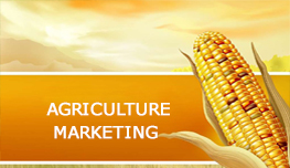 Agricultural Marketing in Nepal
