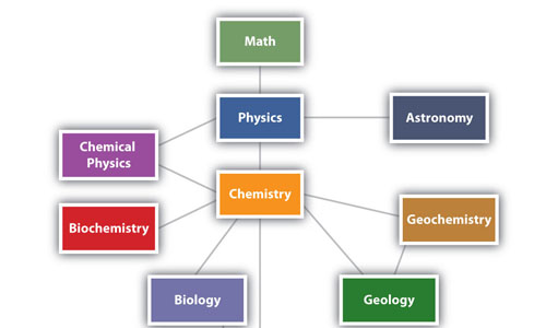 Relation of Biology with Other Sciences