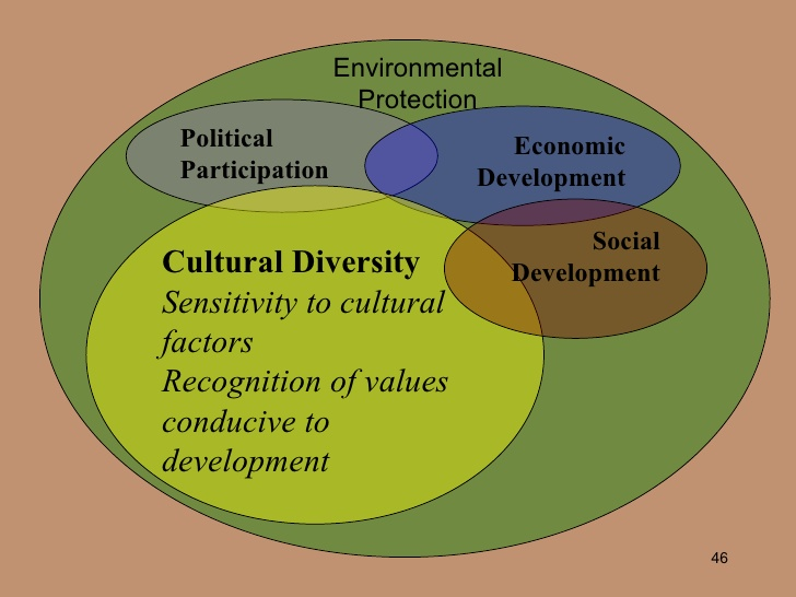 Social, Cultural and Human Factors in Development