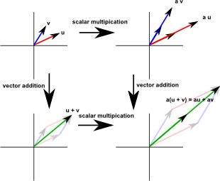 Types of Vector