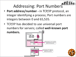 Port Numbers and Socket Address