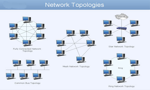 a network topology essay Network topology - network topologies comparison essay - topologies comparison topologies are categorized into different virtual shapes or structures with the.