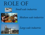 Role of Small, Medium and Large Scale Industries in Economic Development
