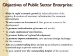 Tourism Industry and Public Enterprises