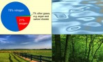 Air, Water, Land, Forest Resource, Wildlife and Minerals
