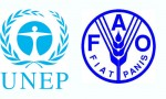 World Food and Agriculture Organization (FAO) and United Nations Environmental Programme (UNEP)