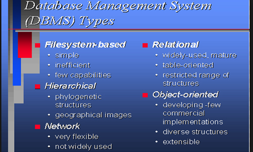 Different types of DBMS