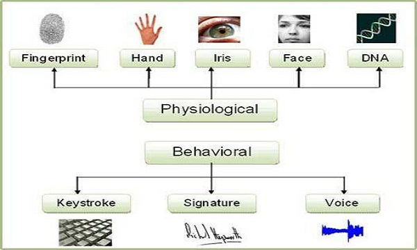 Biometrics and Design Consideration Factor for Medical Instrument
