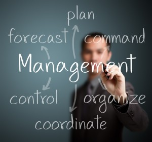 Organizing Process, Structure and Its Importance as Management