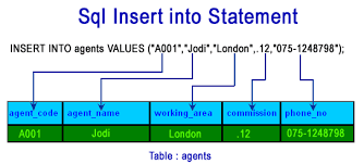 Insertion with its basics