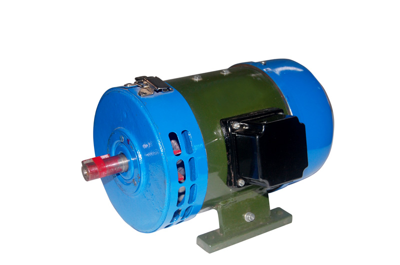 Special Purpose Motors