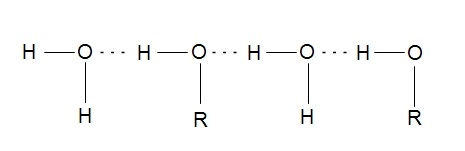 Fig: Hydrogen bonding between alcohol and water molecules