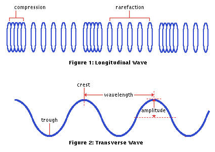 Source: sciencewaveproperties.weebly.com Fig: Longitudinal wave and Transverse wave