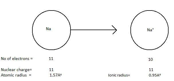 Example of atomic and ionic radius