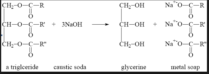 Source:http://iereducation.blogspot.com/2013/03/Process of soponofication