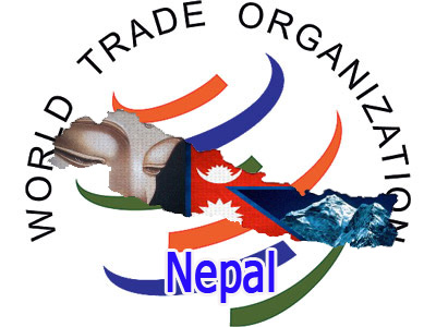 the impact of world trade organization wto The world trade organization and the post-global food crisis agenda 1  the world trade organization and the post-global food  the world trade organization (wto.