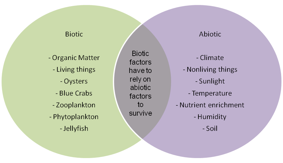 source: socratic.org fig: Ecological factors