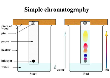 source:socratic.org fig:chromatography