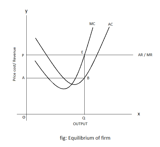 Equilibrium of Firm