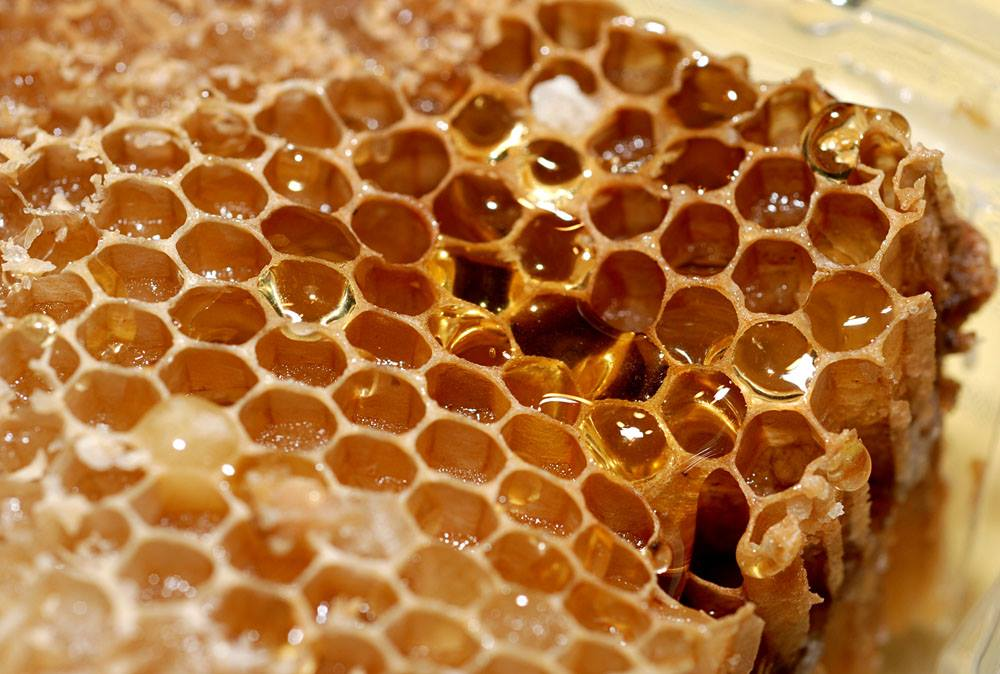 Honey on Wax