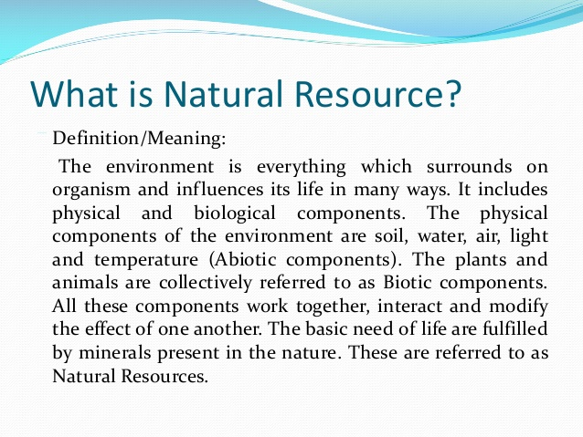 natural resources 2 essay